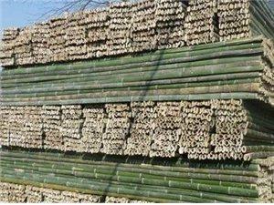 本厂有大量建筑工地竹跳板出售