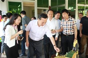 海南省委副书记李军考察诺丽庄园
