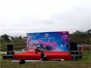 叙永县赤水河流域第二届桃李花节明天正式开幕