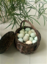 绿壳散养柴鸡蛋