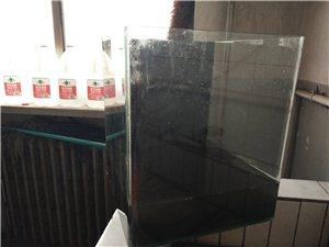 求購一個魚缸