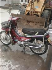 出售钱江qb110-10b正品弯梁摩托车