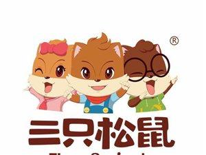 三只松鼠代理