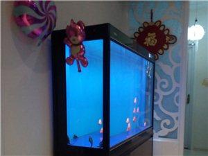 1.5米底滤鱼缸出售