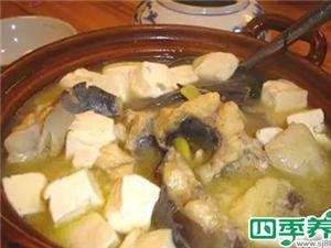白洋淀鲶鱼炖豆腐