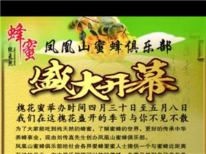 品尝纯蜂蜜,参与养蜂