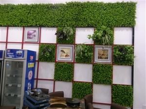 仿真绿植,植物墙