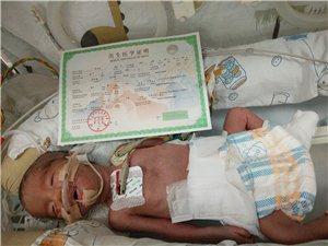 极低体重早产试管婴儿双胞胎求助