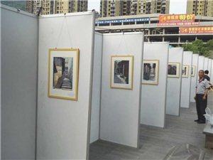 520赵氏三姐弟书画展