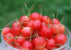 常吃樱桃好处多但要当心楼桃中毒
