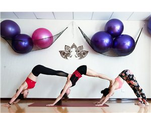 【禅美瑜伽】极速瘦身训练营开班报名