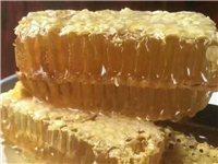農家自制土蜂蜜
