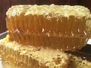 农家自制土蜂蜜