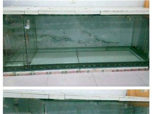出售鱼缸450元