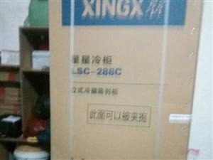 全新立式大冰箱出售