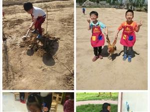 新郑枫叶城堡幼儿园