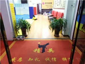 精英跆拳道素质教育