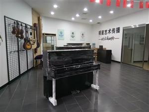 明星艺术传播暑期钢琴、古筝、吉他火爆招生