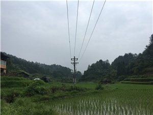 生态农业养殖