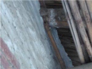 临泉农村危房改造需要什么条件