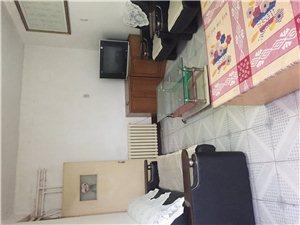 招远出租文化区2室2厅2卫850元/月