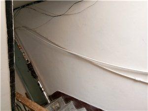 丹顶鹤小区,一个被遗忘的角落,满墙漂水管,这样的水管能坚持多久?