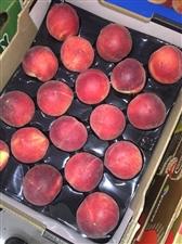 让你能吃到蠡县最优惠的水果。质量能让你放心