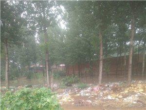 看看啊左北京把民房都泡了大队干部都不管
