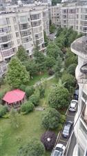 地税小区个人房屋出售