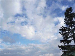 被雨水洗刷过的天空总是那么蔚蓝。