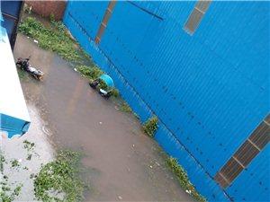 下大雨安了半身水,人无法出行,长时间没人管
