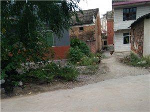 """琴亭镇黄沙州的路,是因""""人""""而修吗?????"""