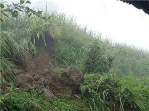 和溪�楠木村10�M(上��林)山�w滑坡