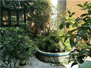 滨江路附近,2楼带100平独立花园,配实图喔!