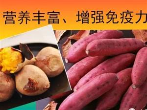 自家种植红薯。38元/箱,5KG/箱。包邮。