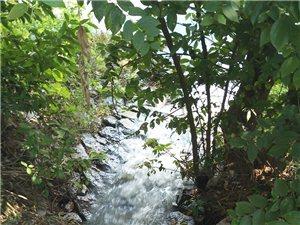 锦江名城这边有一个下水道,排污水严重,臭气熏天