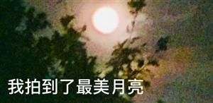 【帅男秀场】滕术林