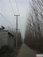 【强烈呼吁】北辛村照明设施成摆设,孤身一人不敢走!