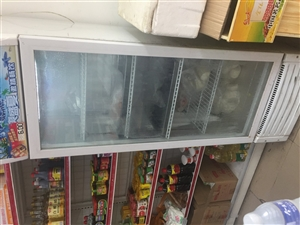 立式冰箱展柜,冷藏冷冻效果完好,没有故障...