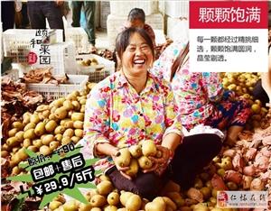 黄心猕猴桃超市卖多少你知道吗?我见过最便宜的,跟我一般大小的水果店4元一个,进口的8元一个,而我嘞,