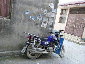 金沙国际网上娱乐男士摩托一辆,有意者请联系