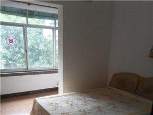 地质宿舍2室1厅1卫28万元