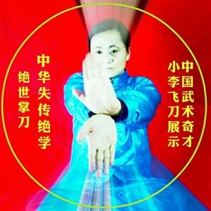【帅男秀场】中国武术奇才小李飞刀