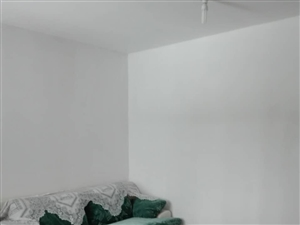 床2个沙发1个衣柜1组柜子2个,甩卖价1...