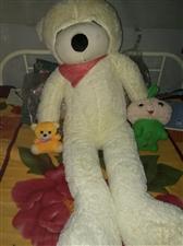 图片上的狗熊都是全新的,因为放假拿不回去...