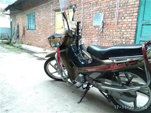 大阳弯梁摩托车