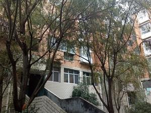 龙腾锦城慧龙苑3室2厅2卫64万元