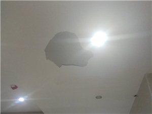 真倒霉,刚出电梯门口,砸了一头灰!