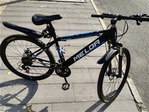 九成新山地自行车出售500元电话1317...