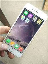 自用苹果六,金色16G的!外观85新没有...